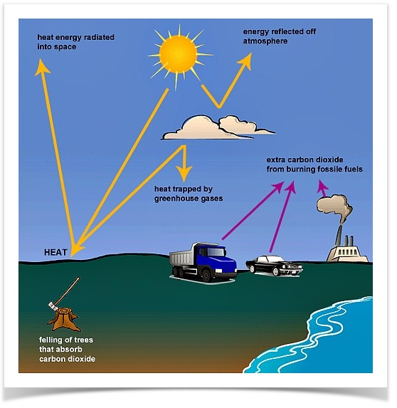 The Following Diagram Shows How Greenhouse Gases Trap