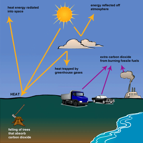 The Following Diagram Shows How Greenhouse Gases Trap Energy From