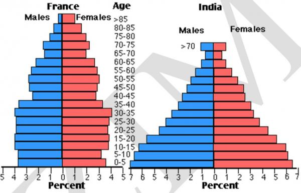the charts below compare the age structure of the