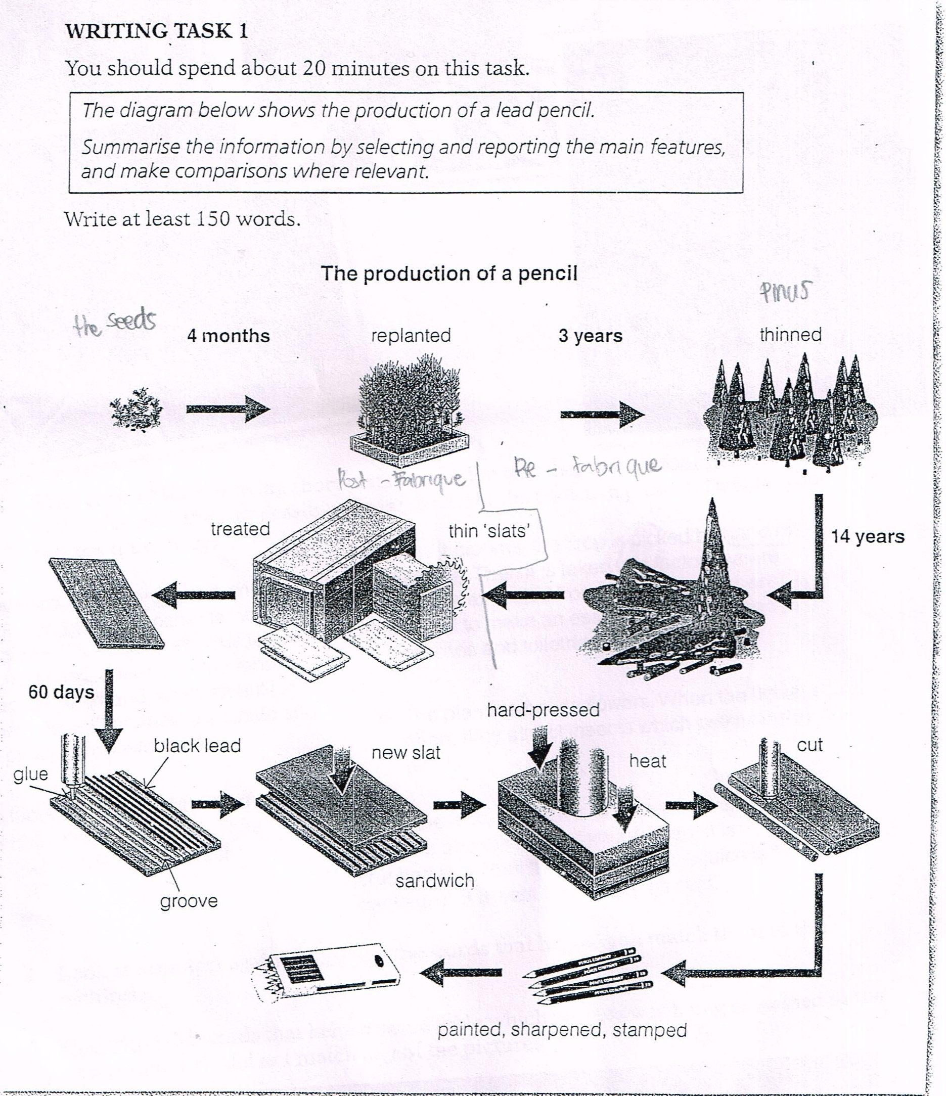 the diagram below shows the production of a lead pencil.summarise ...