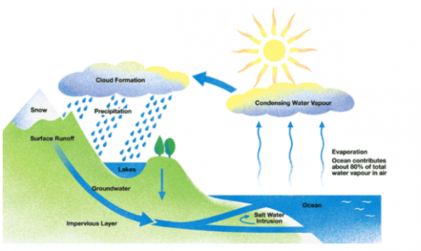 essay topics: the diagram below shows the water cycle, which is the  continuous movement of water on, above and below the surface of the earth