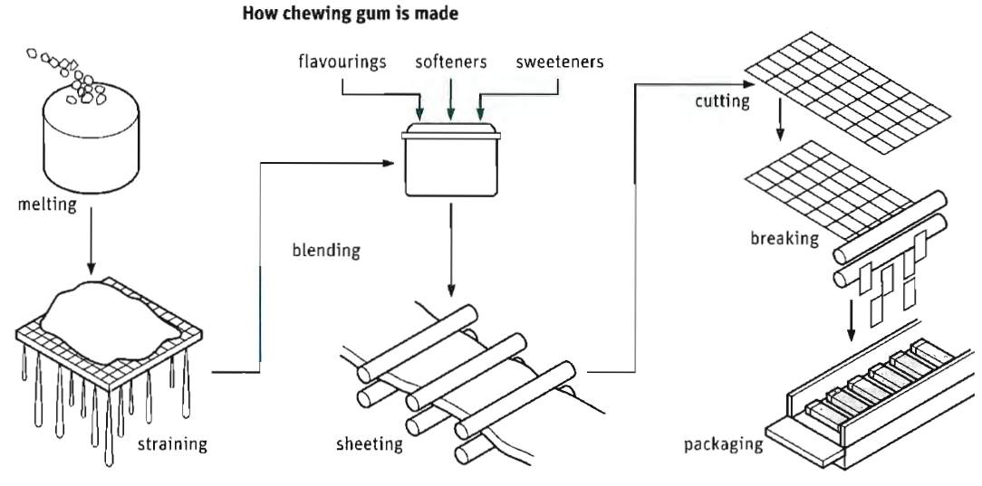 describing process of making chewing gum  revise