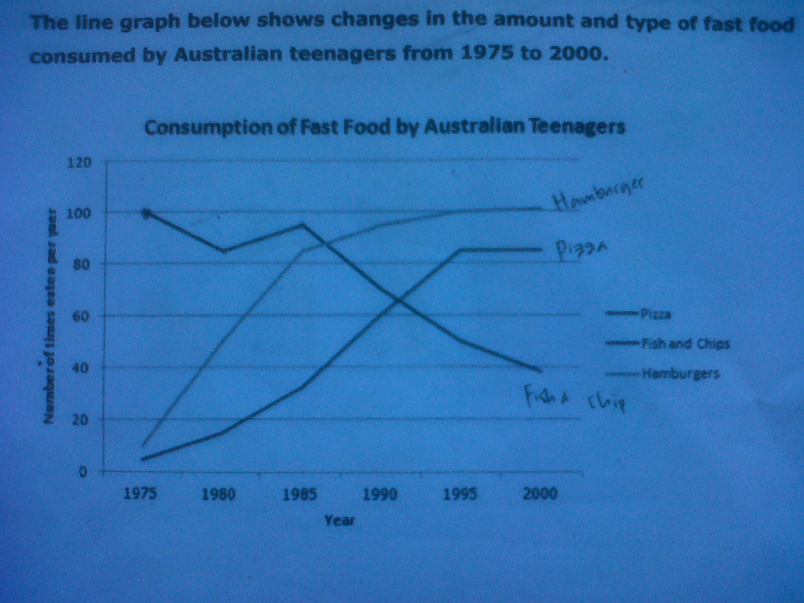 the line graph shows the report of the consumption of three types  essay topics the line graph shows the report of the consumption of three types of fast food by youths from 1975 to 2000