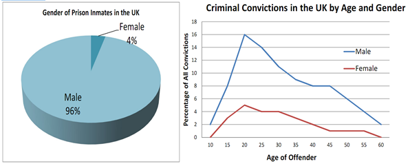 criminal prosecution, convictions, prison sentences essay The big question: are prison sentences too lenient,  the crown prosecution   if prison sentences are too long there will be no incentive for criminals to.