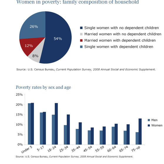 the pie chart shows the percentage of women in poverty and the bar  essay topics the pie chart shows the percentage of women in poverty and the bar chart shows poverty rates by sex and age they are from the united states
