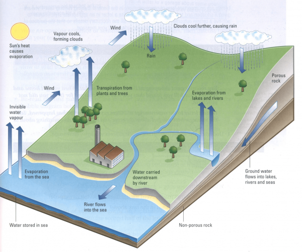The Diagram Below Shows How The Water Cycle Works Testbig